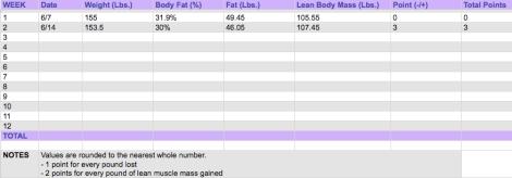 progress spreadsheet